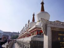 藏传佛教圣地 青海高原塔尔寺
