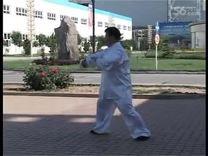 庞大明杨式简化(28势)太极拳欣赏