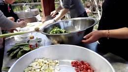 桃园农庄野餐