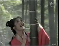 黄梅戏 相思鸟树上偎 杨俊 张辉