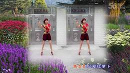 宜城桂花广场舞 兔女郎编舞 珍珍