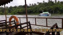第二集;游海口东寨港红树林纪实 2018海南之行系列片 二