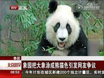 """泰国象园把大象涂成熊猫色 有网友称""""丢了泰国特色""""..."""