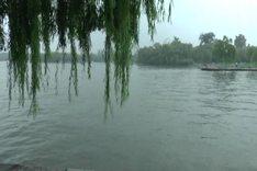 美丽的大明湖
