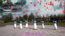 嘉兴南湖区姐妹花广场舞  旗袍美人 编舞:饶子龙