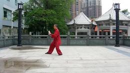 杨氏传统太极拳103式蔡阳平