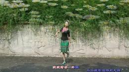 199《竹篱笆外野菊花》丁丁深圳冰之霞九江丁丁广场舞编舞:王梅