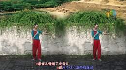 《又唱走西口》206丁丁深圳冰之霞九江丁丁广场舞编舞:王梅