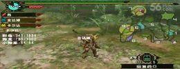 怪物猎人MOD3(我和战斗猫打凤舞鸟)