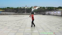 威远幸福广场舞《梨花颂》233