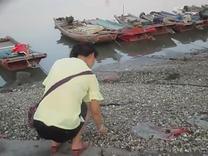 颜安在厦门东屿海边2015。8。2(四)