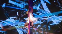 第22届WCOPA世界表演艺术锦标赛钢管舞