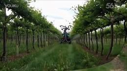 国外各式各样的喷药机器,农业真强大【Youtube科技创新】_标清