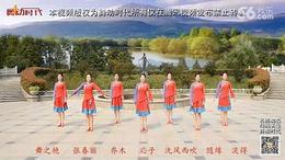 応子春丽广场舞 藏羚羊