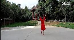 月梅广场舞 阿尔山的姑娘 背面