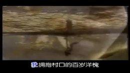 爱剪辑 田美荣音乐集锦12《多情的土地》