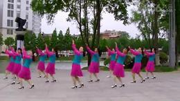 康美广场舞《寸草心》