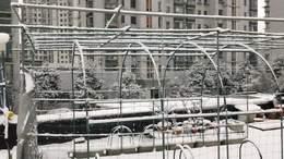 MAH0068春雪
