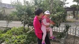2017年国庆节乐乐在盘锦(手机视频)