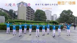 燕子广场健身舞《金莲的爱》(动感健身操及教学)