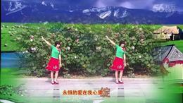105上海阿英广场舞《远方》编舞:凤凰六哥 视频制作 演示:阿英