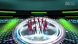 醉月亮 宜昌市白洋高新区滚钟坡广场舞张振兰 红喜数码传媒201508