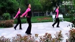无理取闹(歌词字幕)紫玫瑰广场舞