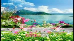 《美丽的岳阳我的家》(周俊英原唱)