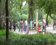 石家庄秀水公园