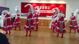 藏舞  侨联队演出