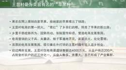荣誉云商学院:中西部淘宝村案例分析