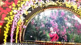 老婆是天 枝江市顾家店镇石半坡广场舞胡守英 红喜数码传媒201508...