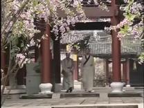 俞淨意公遇灶神記  電影  06