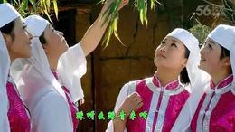 音乐欣赏 花儿与少年 吕继宏