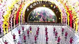 小小新娘花 枝江市顾家店镇石半坡广场舞徐家兰 红喜数码传媒2015