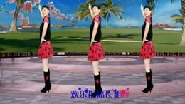 巴桑拉姆   祝酒歌  广场舞版