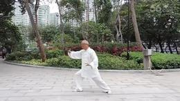 杨式太极拳竞赛套路演练