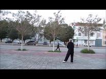 49式武当太极剑<85岁晨练>背面