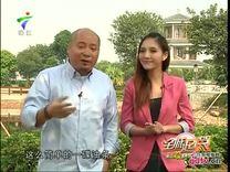 全城起筷 桂姐碌鹅_ 全城起筷 _视频在线_广东电视网