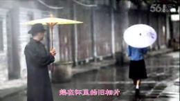 雨中的孤雁