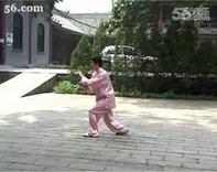 吴式45式太极拳全套背向演练