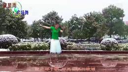 流星雨广场舞 又见北风吹(抠像)