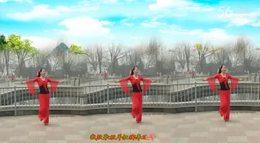 月梅广场舞【绿草艳花】含正背面分解原创