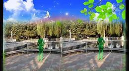月梅广场舞