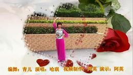 109上海阿英广场舞《草原嗨歌》编舞:青儿 视频制作 演示:阿英