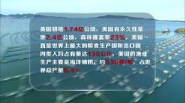 柏华国际农业集团宣传片
