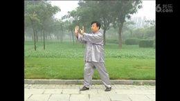 杨式太极拳小架