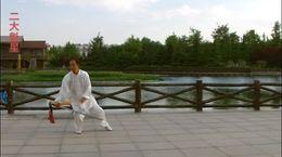 贾廷义杨式53式太极剑