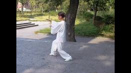 四十式太极拳竞赛套路   演练陈庆琳
