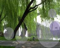 颐和园植物园随记